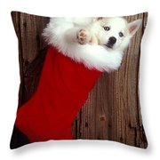 Puppy In Christmas Stocking Throw Pillow by Garry Gay