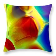 Puppy In Light Throw Pillow by Omaste Witkowski