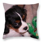 Puppy Look Throw Pillow