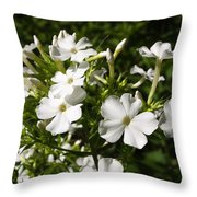 Pure And Simple Elegance Throw Pillow