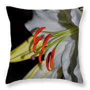 Pure Lily Throw Pillow