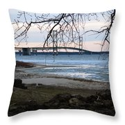 Pure Michigan Throw Pillow