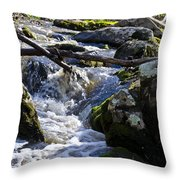 Pure Mountain Stream Throw Pillow