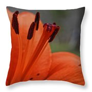 Pure Orange  Throw Pillow