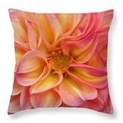 Pure Pastels Throw Pillow