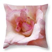 Pure Rose Throw Pillow