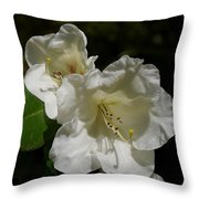 Pure Spring Throw Pillow