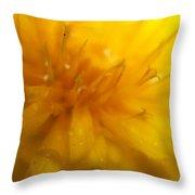 Pure Sun Shine Dandelion Throw Pillow
