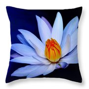 Pure White On Blue Throw Pillow