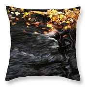 Pure Wild Autumn Denmark Throw Pillow