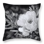 Purely Portulaca Throw Pillow