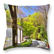 Purifying Walk Throw Pillow