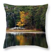 Purity Lake Throw Pillow