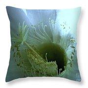 Purity Throw Pillow