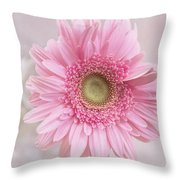 Purity Of The Heart Throw Pillow