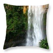 Purlingbrook Falls Throw Pillow