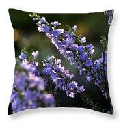 Purple 29987 Throw Pillow