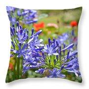 Purple Agapanthas Throw Pillow