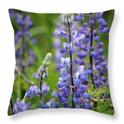 Purple Alaskan Lupines Throw Pillow