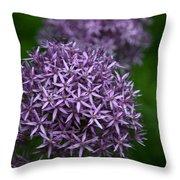 Purple Allium Throw Pillow