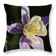 Purple And Cream Columbine Flower Throw Pillow