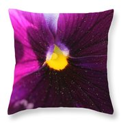 Purple And Pollen Throw Pillow