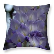 Purple And Violet Wisteria Blossom  Throw Pillow