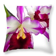 Purple And White Cattleyas Against White Space Throw Pillow