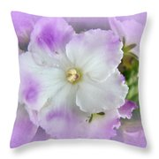 Purple And White Fancy African Violets Throw Pillow