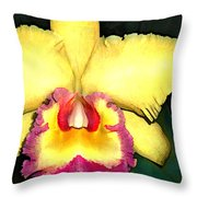 Purple And Yellow Cattleya Orchids Throw Pillow
