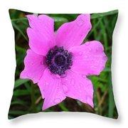 Purple Anemone - Anemone Coronaria Flower Throw Pillow