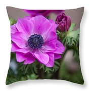 Purple Anemone. Flowers Of Holland Throw Pillow