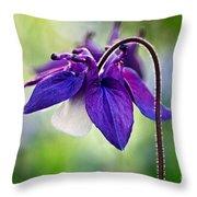 Purple Aquilegia Throw Pillow