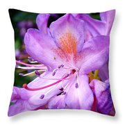 Purple Azalea Throw Pillow