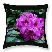 Purple Azalea Throw Pillow