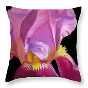 Purple Bearded Iris Throw Pillow