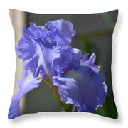 Purple Beauty Iris Throw Pillow