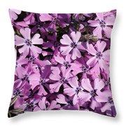 Purple Beauty Phlox Throw Pillow