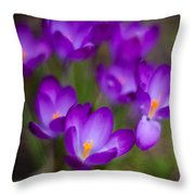 Purple Blanket Throw Pillow