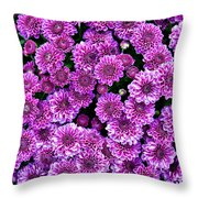 Purple Blanket Throw Pillow