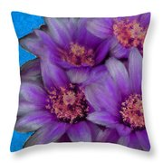 Purple Cactus Flowers Throw Pillow
