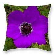 Purple Calanit Magen Throw Pillow