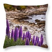 Purple California Coastline Throw Pillow