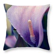 Purple Calla Flower Throw Pillow