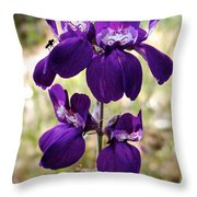 Purple Chinese Houses In Park Sierra-ca Throw Pillow