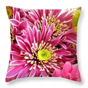Purple Chrysanthemum Throw Pillow