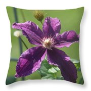 Purple Clemaits   # Throw Pillow