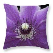 Purple Clematis Throw Pillow