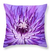Purple Clematis Throw Pillow
