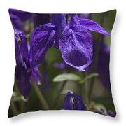 Purple Columbine 3 Throw Pillow